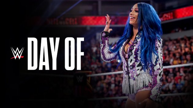 Image result for WWE Day Of WWE